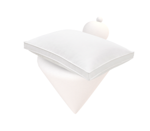 Our Plush Pillow